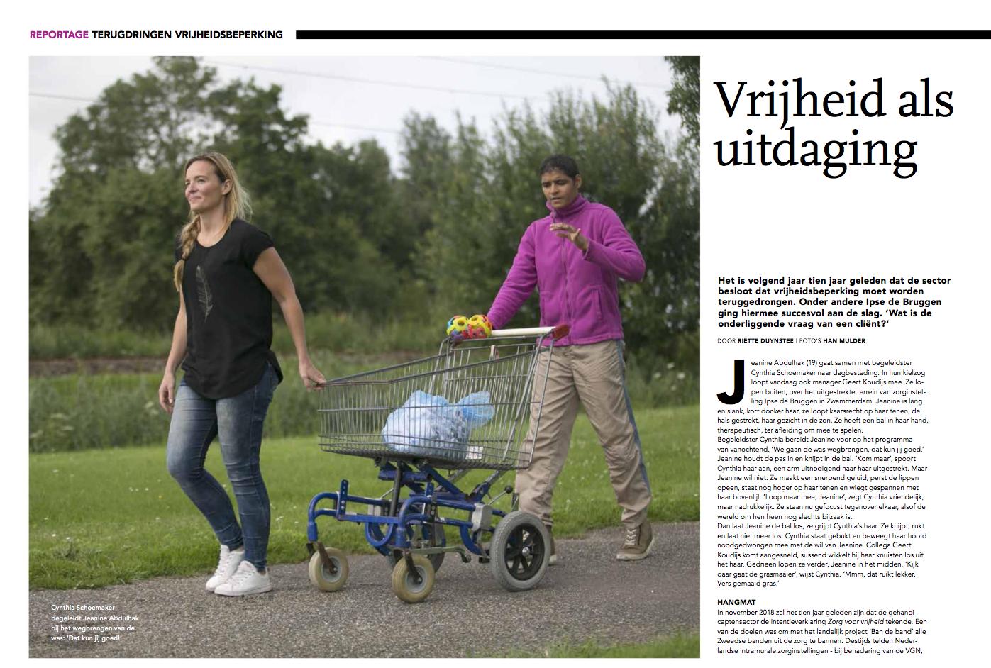 reportage Ipse de Bruggen.png